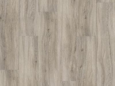 Basic 30 Dub pastelově šedý