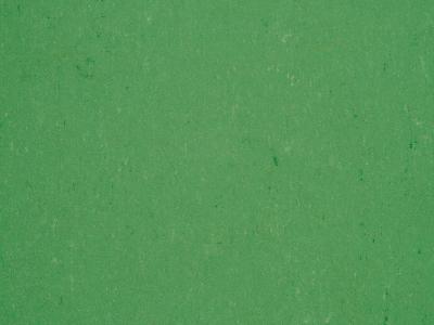 Colorette 2,5 mm 131-006...