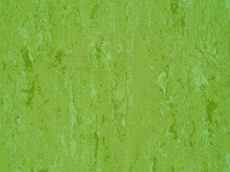 Linodur LPX 151-011 avocado green