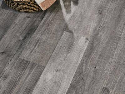 Primero 22931 Sebastian oak