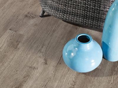 Primero 24856 Major oak