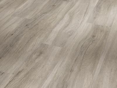 Basic 5.3 Dub pastelově šedý